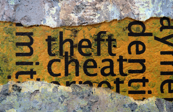 Theft and Cheat Edited Image